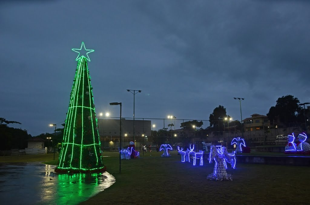 Búzios tem decoração de Natal com árvore de 12 metros